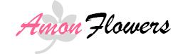 Amon Flowers Pitesti, depozit de flori Pitesti